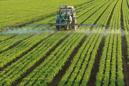 agricultura-convencional