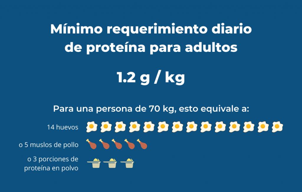 requerimiento mínimo de proteína para adultos