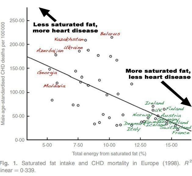 relación entre grasas saturadas y muerte por enfermedad cardiovascular