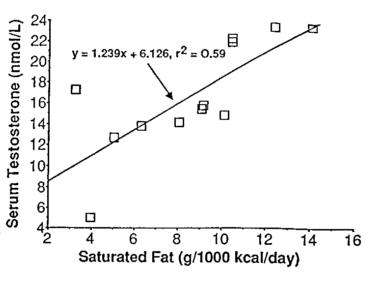 grasas saturadas y testosterona