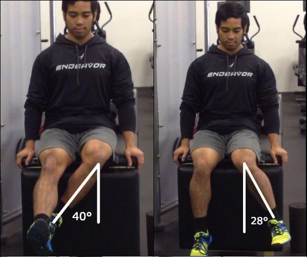 flexibilidad y rotación interna y externa de cadera