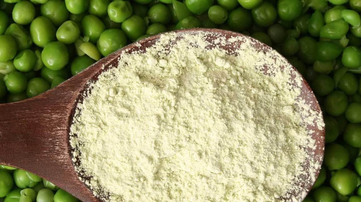 suplemento de proteína en polvo de chícharo