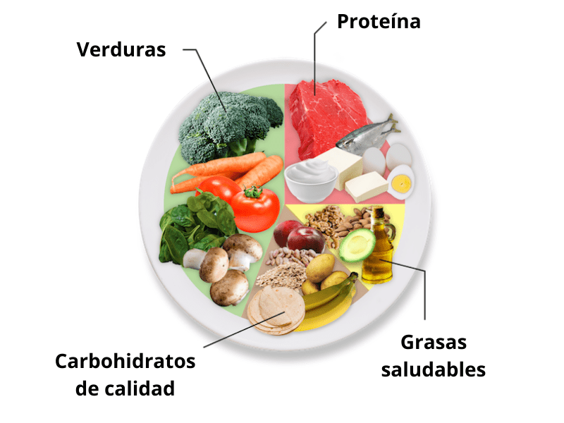 plato saludable fitness vitae