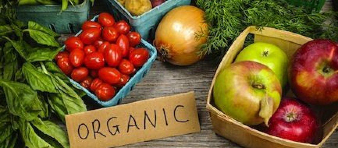 organico-portada